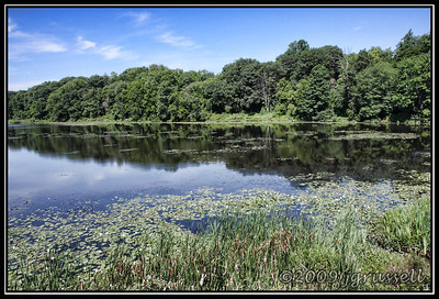 Summer on Weston Mills Pond